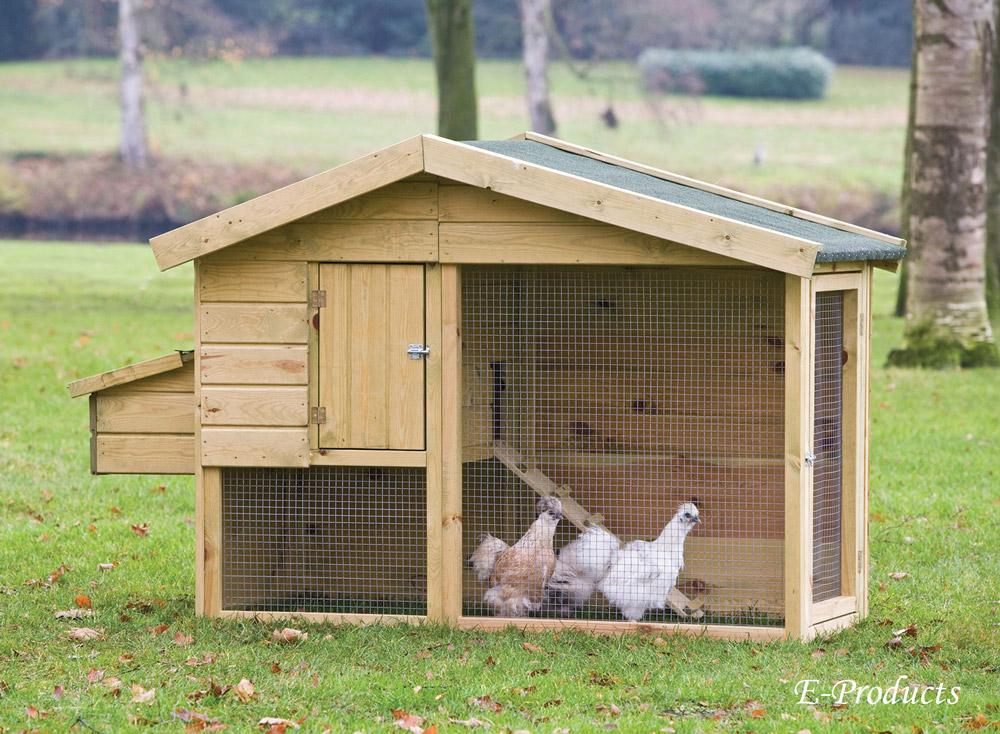 Hühnerstall Barnevelder