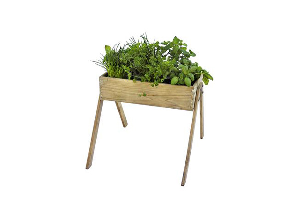 <BIG><B>Grenen minigarden junior (53 x 60 cm)</B></BIG>