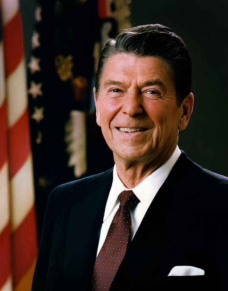Tuinkast Reagan