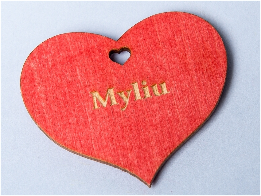 Rood hart magneet