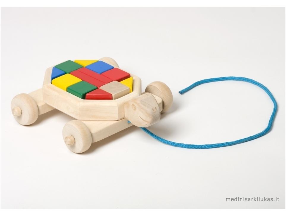 Schildpad met blokken